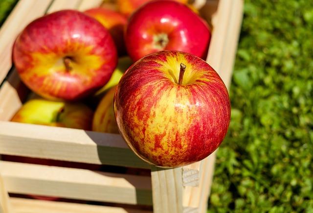 Jak wybrać metodę przechowywania owoców?